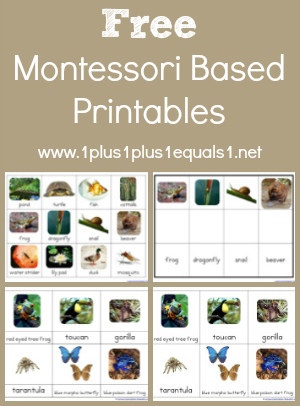 Montessori Printables from 1+1+1=1
