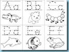 Animal ABC Flashcards 1