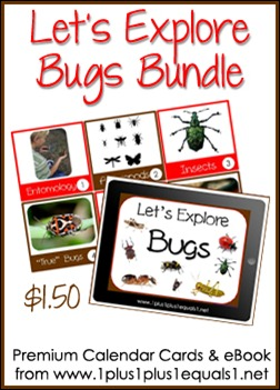Let's Explore Bugs Button