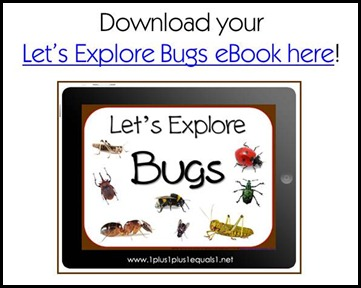 Let's Explore Bugs eBook