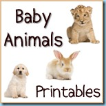 Baby Animals Printable Pack