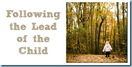 Following-the-Lead-of-the-Child1