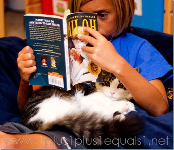 Reading Shiloh