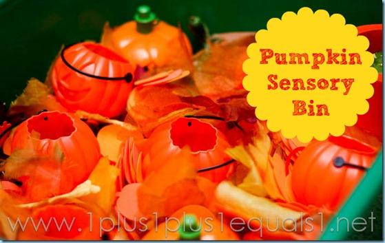 Pumpkin Sensory Bin