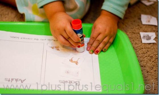 Home Preschool Letter A -8191