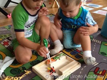 Chesnut Grove Academy Frogs Theme