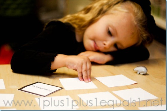 Home Preschool Letter Hh -3187