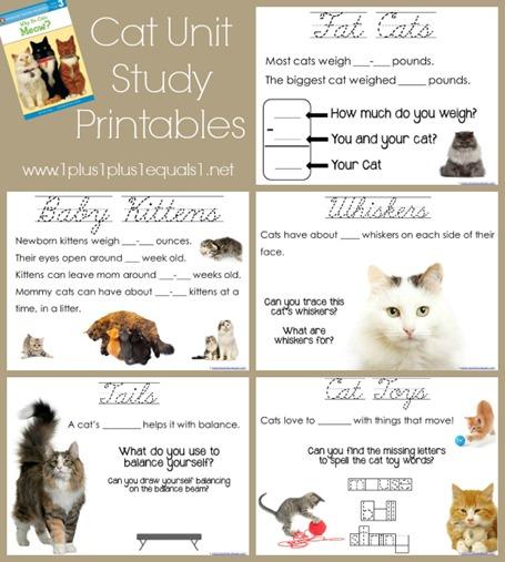 Cat Unit Study Printables