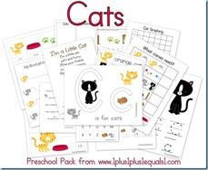 Cats Preschool Pack