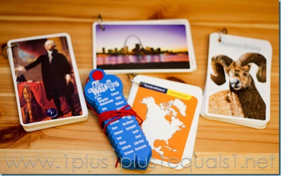 Continent Box North America -3516