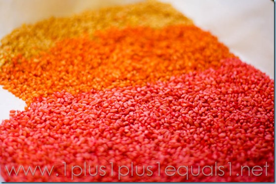Colored Wheat Berries -9872