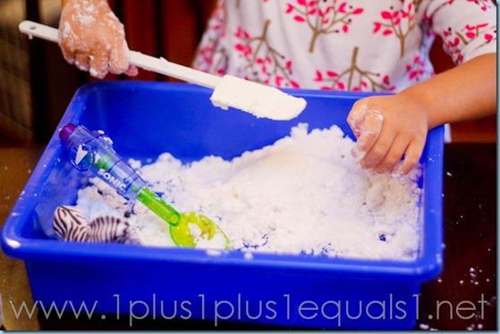 Home Preschool -9747