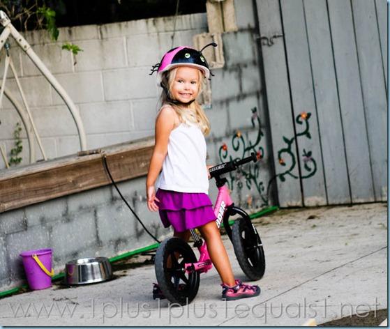 Riding Toys-8172