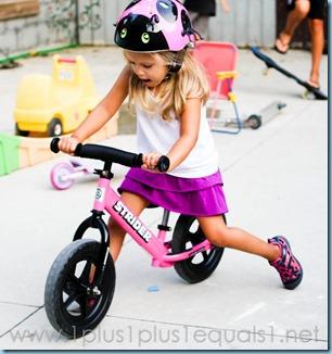 Riding Toys-8190