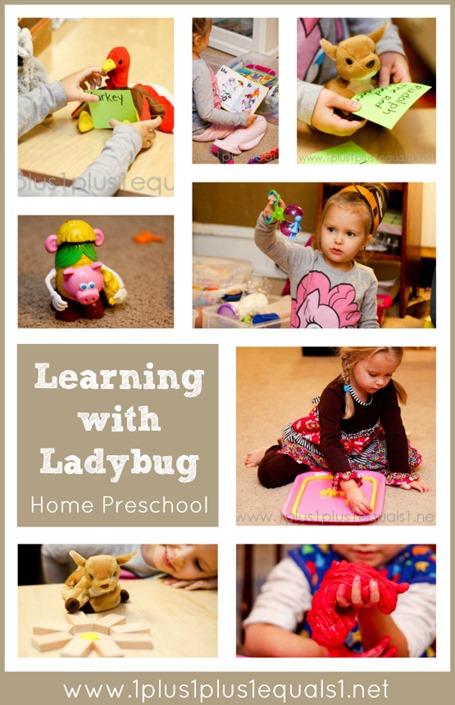 Learning with Ladybug Age 4