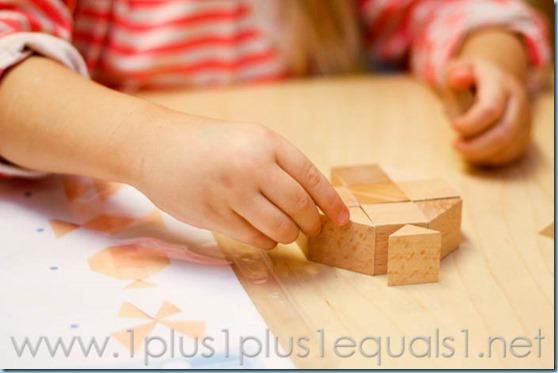 Home Preschool  -3526