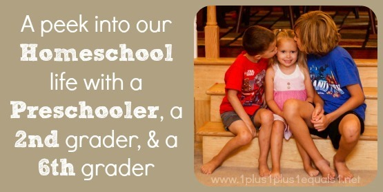 A Peek into our Homeschool ~ End of 2013