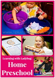 Learning with Ladybug Home Preschool January 2014