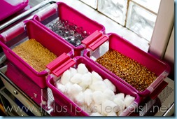 Sensory Bin Supplies-4730
