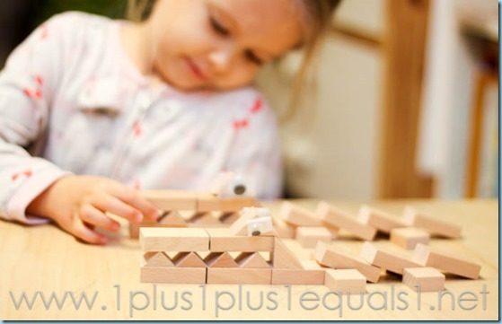 Home Preschool -6428