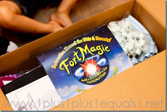 Fort Magic -7659