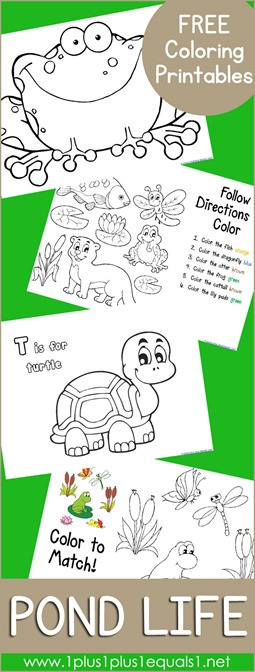Free Pond Coloring Printables