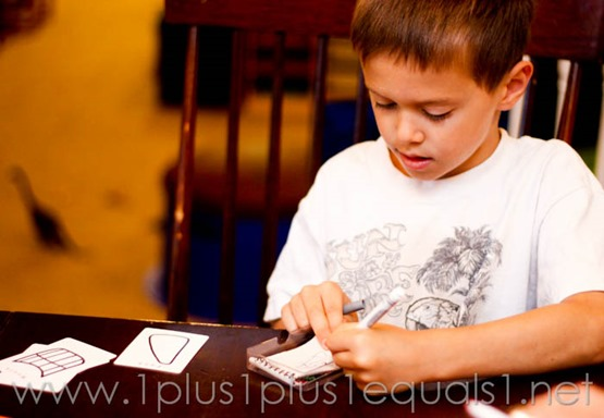 Pick and Draw -8795