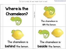 Chameleon Positional Words Book