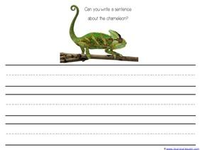Write a Sentence