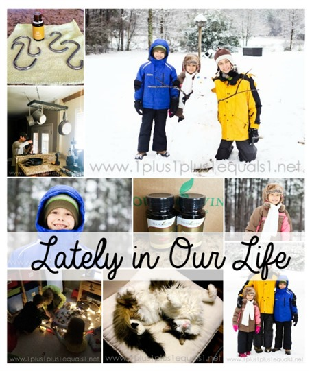 Lately in Our Life February 2015 2