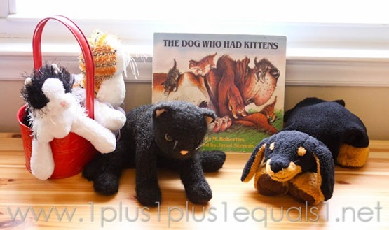 The Dog Who Had Kittens -5036
