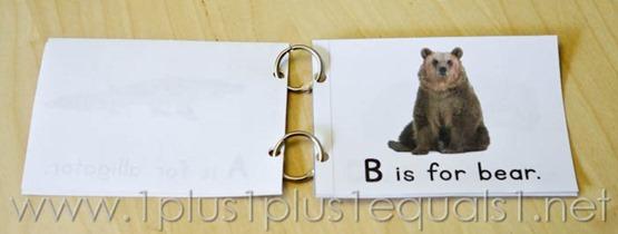 Animal ABC Easy Reader -6885