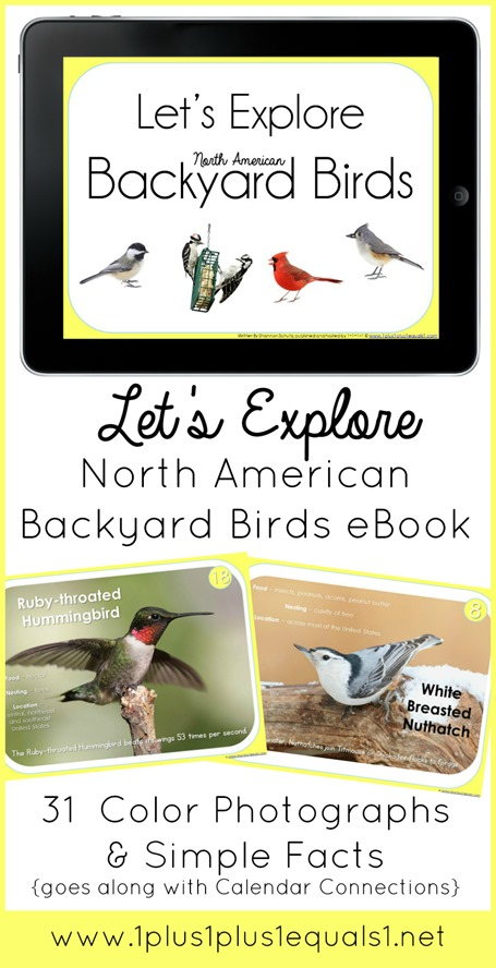 Backyard Birds eBook