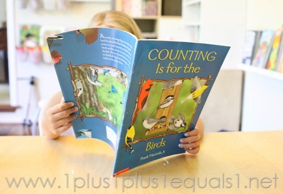 Counting is for the Birds -7403