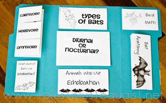 Bats -8290
