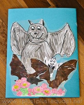 Bats -8293