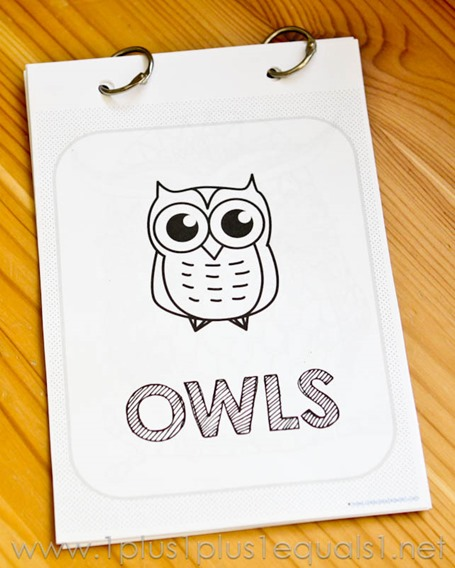Owl Coloring Printables