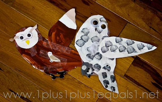 Owl Lapbook -8839