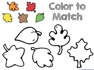 Fall Leaves and Trees Coloring  (1)