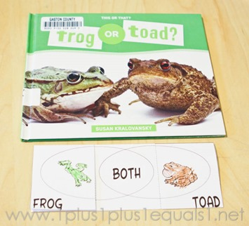 Frogs -0015