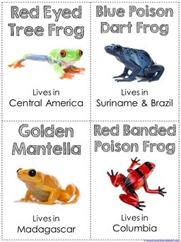 Frog Facts printable
