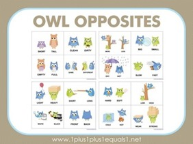 Owl-Opposites-Flashcards41