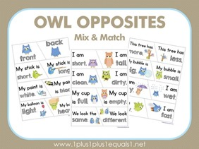 Owl-Opposites-Mix-and-Match3