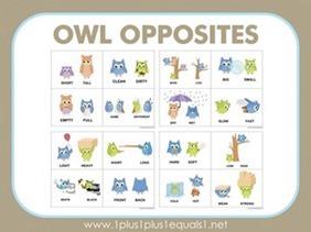 Owl-Opposites-Flashcards411