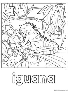 Printable Animal Alphabet worksheets Letter M for Monkey ... | 311x233