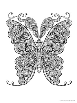 Butterfly Coloring (10)