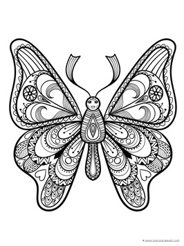 Butterfly Coloring (9)