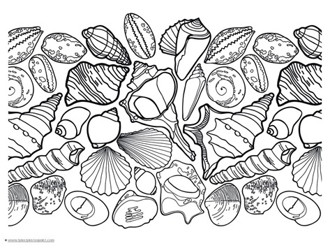 Seashell Coloring (1)