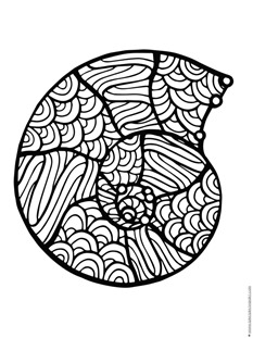 Seashell Coloring Pages - Get Coloring Pages | 311x233