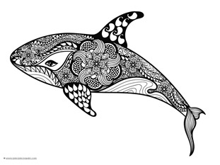 Dolphin and Whale Coloring Pages (1)